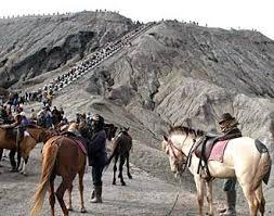 naik kuda di bromo,menunggang kuda di bromo,harga naik kuda di bromo,biaya naik kuda di bromo,harga sewa kuda di bromo 2017,biaya berkuda di gunung bromo,harga naik kuda di bromo 2017,harga naik jeep di bromo,harga sewa jeep di bromo,harga penginapan di bromo,sewa jaket di bromo,harga sewa kuda di bromo 2016,Sewa kuda di bromo 2017,Sewa kuda di bromo,sewa kuda di bromo 2017,harga naik kuda di bromo 2017,harga naik jeep di bromo,naik kuda di gunung bromo,harga sewa jeep di bromo,harga penginapan di bromo,sewa jaket di bromo,harga sewa jeep dan kuda di bromo