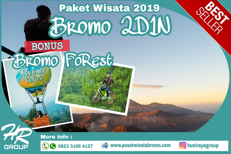 Paket Wisata Bromo 2 Hari 1 Malam Bonus Bromo Forest Terbaru